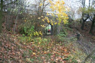 """Mit dem Museumseisenbahnverein """"Windbergbahn werden die Gewölbebrücken freigeschnitten."""