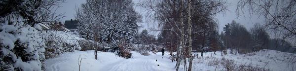 winter_slide_1