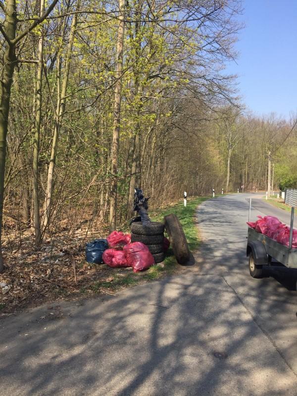 Viel Müll findet sich besonders an der Kohlenstraße am Windberg